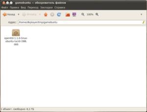 Установка DEB пакета в Ubuntu